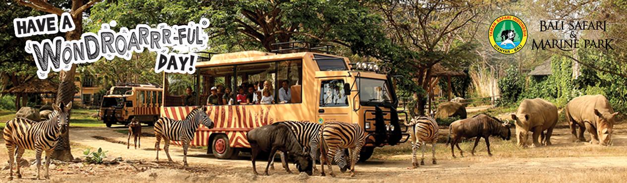 Dura Villas Bali Activities Safari